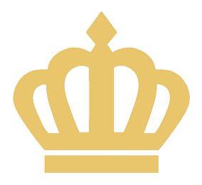 Amerpus Logo PIN Geld
